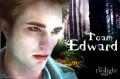 Battle: Team Edward